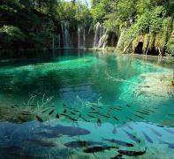 Биопрепарат Био-плюс для шоковой очистки прудов и аквариумов